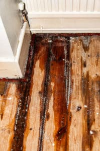 Plantation Water Damage