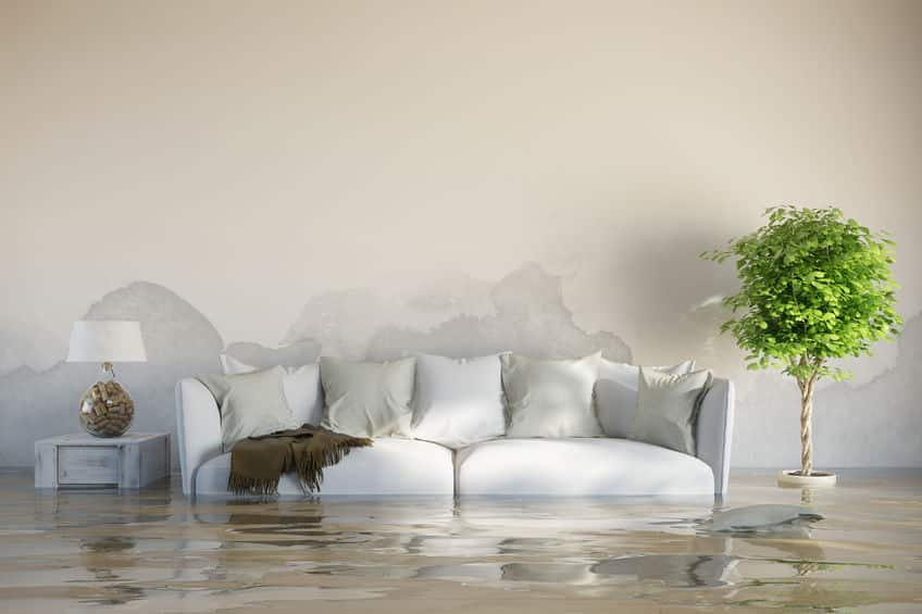 At Home Water Damage Assessment