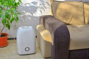 dehumidifier for your home