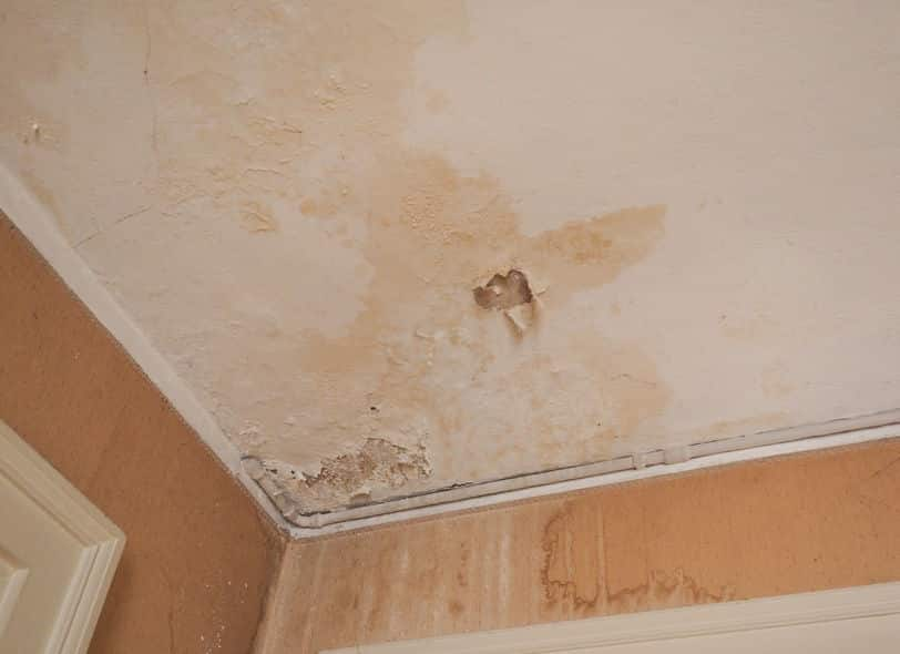 The Different Types of Water Damage